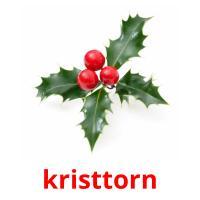 kristtorn picture flashcards
