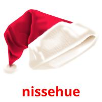 nissehue picture flashcards