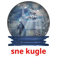 sne kugle picture flashcards
