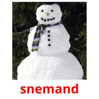 snemand picture flashcards