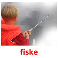fiske picture flashcards