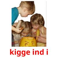 kigge ind i picture flashcards