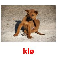 klø picture flashcards