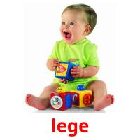 lege picture flashcards
