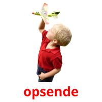 opsende picture flashcards
