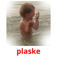 plaske picture flashcards