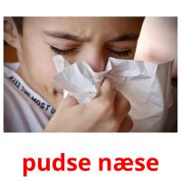 pudse næse picture flashcards