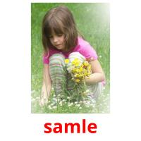 samle picture flashcards
