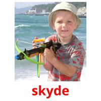 skyde picture flashcards