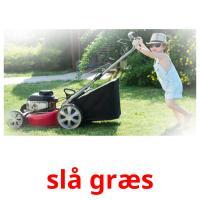 slå græs picture flashcards