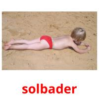 solbader picture flashcards