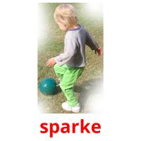 sparke picture flashcards