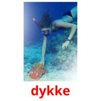 dykke picture flashcards
