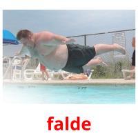falde picture flashcards