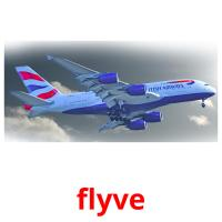 flyve picture flashcards