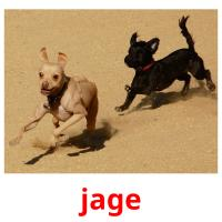 jage picture flashcards