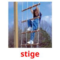 stige picture flashcards