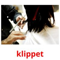 klippet picture flashcards