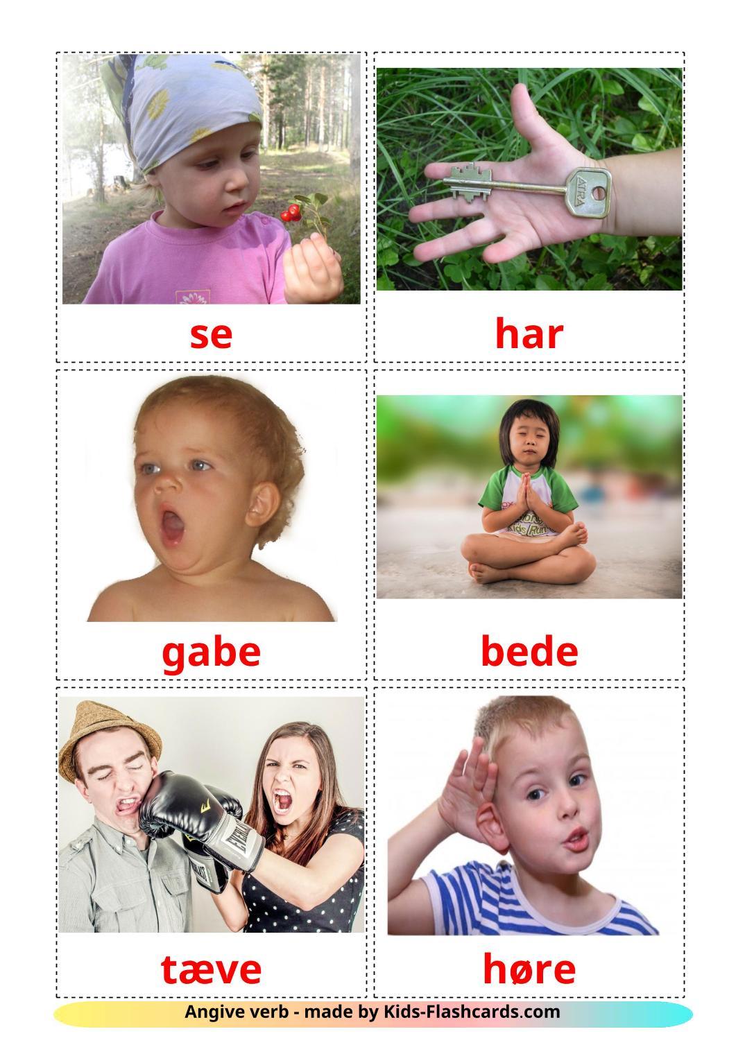 State verbs - 23 Free Printable dansk Flashcards