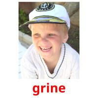 grine picture flashcards