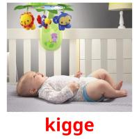 kigge picture flashcards