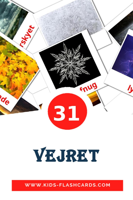 31 Vejret Picture Cards for Kindergarden in dansk
