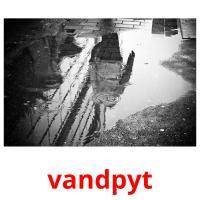 vandpyt picture flashcards