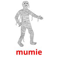 mumie picture flashcards
