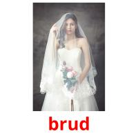 brud picture flashcards