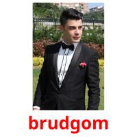 brudgom picture flashcards