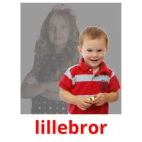 lillebror picture flashcards