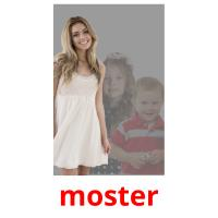 moster picture flashcards