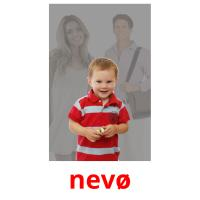 nevø picture flashcards
