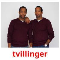 tvillinger picture flashcards