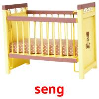 seng picture flashcards