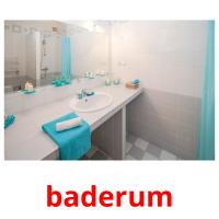 baderum picture flashcards