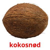 kokosnød picture flashcards