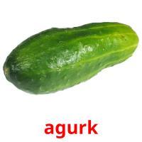 agurk picture flashcards