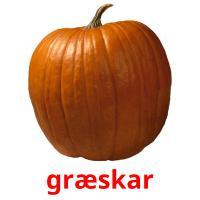 græskar picture flashcards