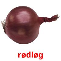 rødløg picture flashcards