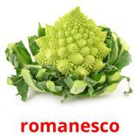 romanesco picture flashcards