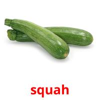 squah picture flashcards