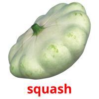 squash picture flashcards