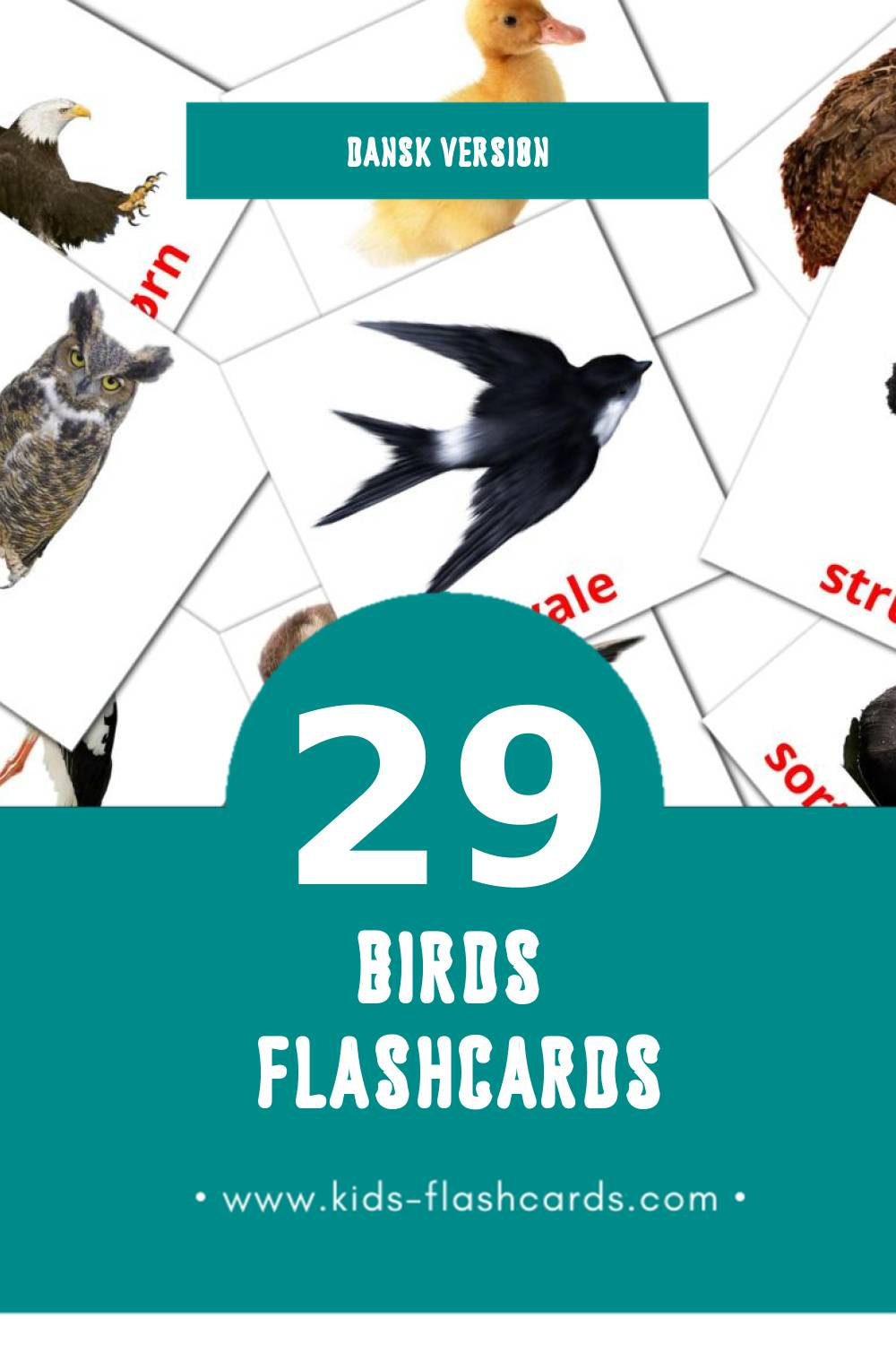 Visual Fugle Flashcards for Toddlers (28 cards in Dansk)