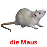 die Maus picture flashcards