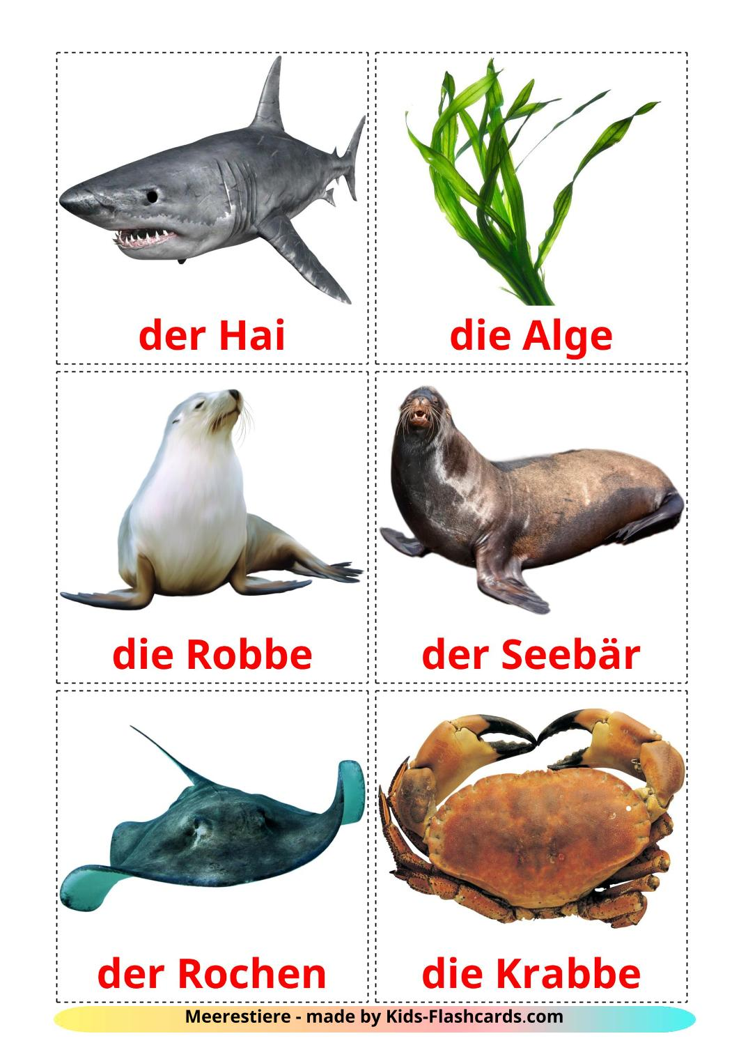 Sea animals - 23 Free Printable german Flashcards