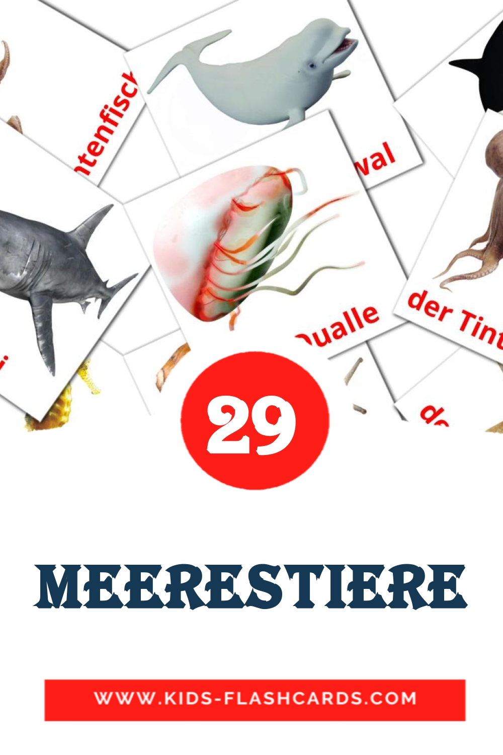 23 Die Meerestiere  Picture Cards for Kindergarden in german