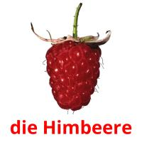 die Himbeere picture flashcards