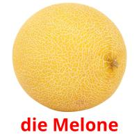 die Melone picture flashcards