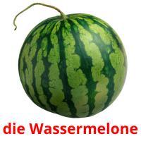 die Wassermelone picture flashcards